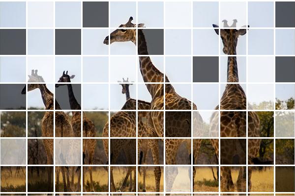 Mosaico en foto